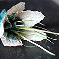 Fleur_de_cr_me_etd__cume