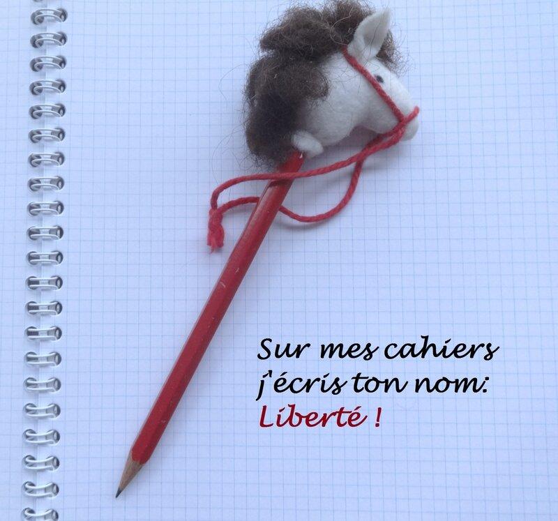 sur_mes_cahiers