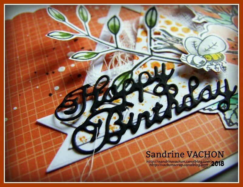 Carte de Sandrine VACHON défi 519 janv (2)