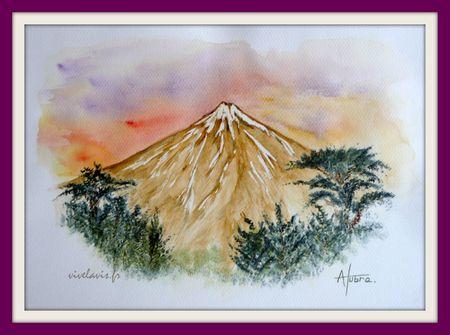 72 - Le Teide_Juin 2010