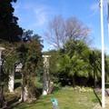 26février2007 097
