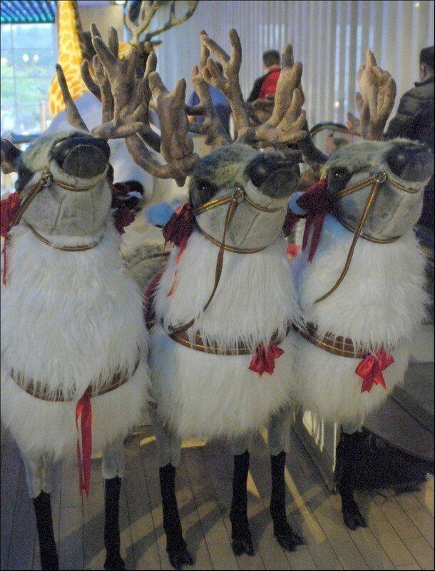 Les rennes du Pernod