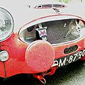 2009-Annecy-Tulipes-Austin Healey-13
