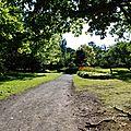 Bois-de-Coulonge-Arboretum-27