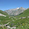 Isère : coordonnées des professionnels en traction animale
