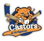 logo-avignon