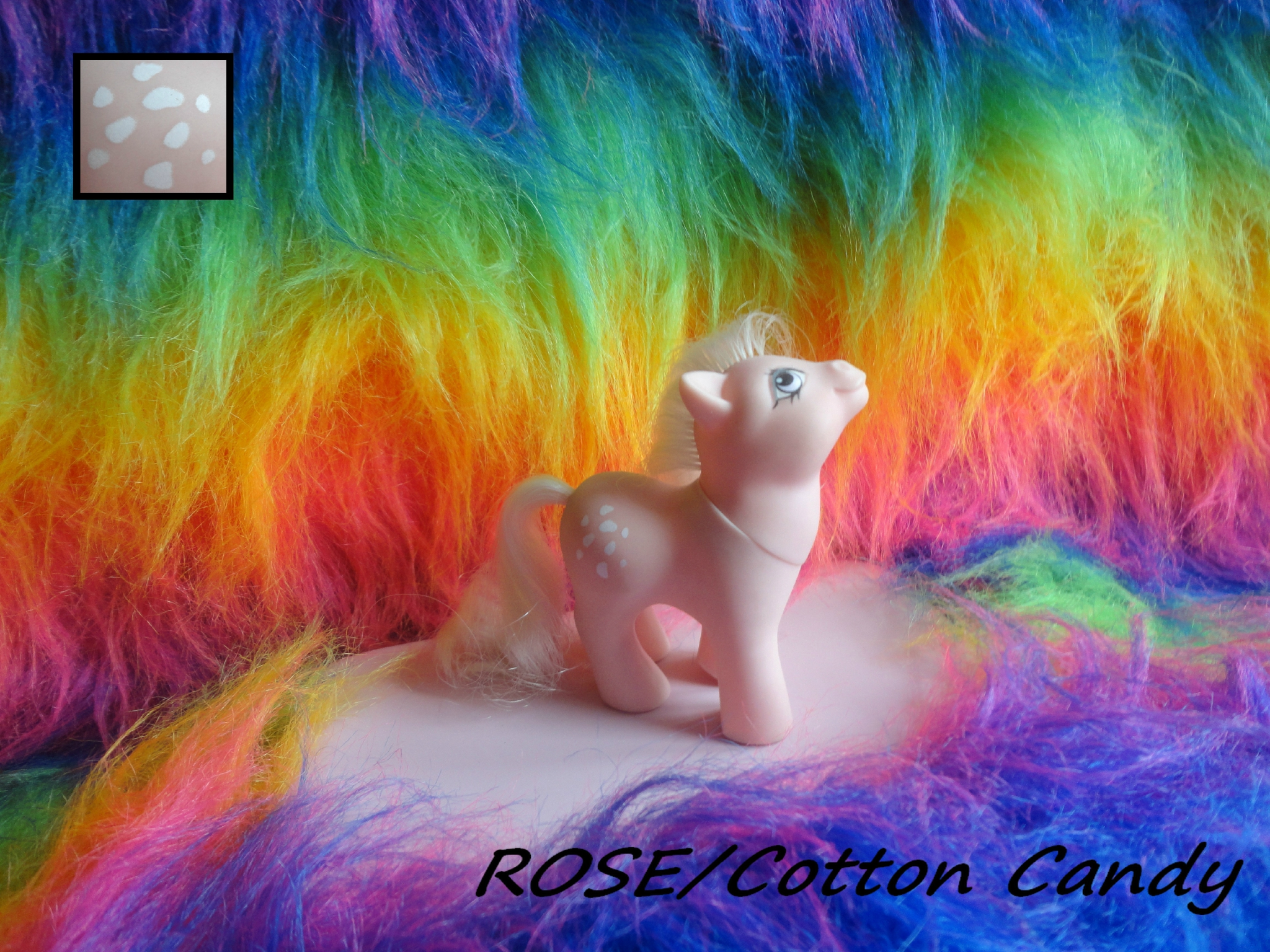 ROSE (Baby Cotton Candy)