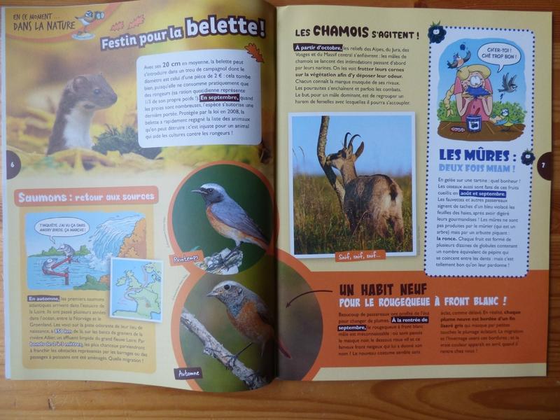 Oiseau mag automne 17 (2)