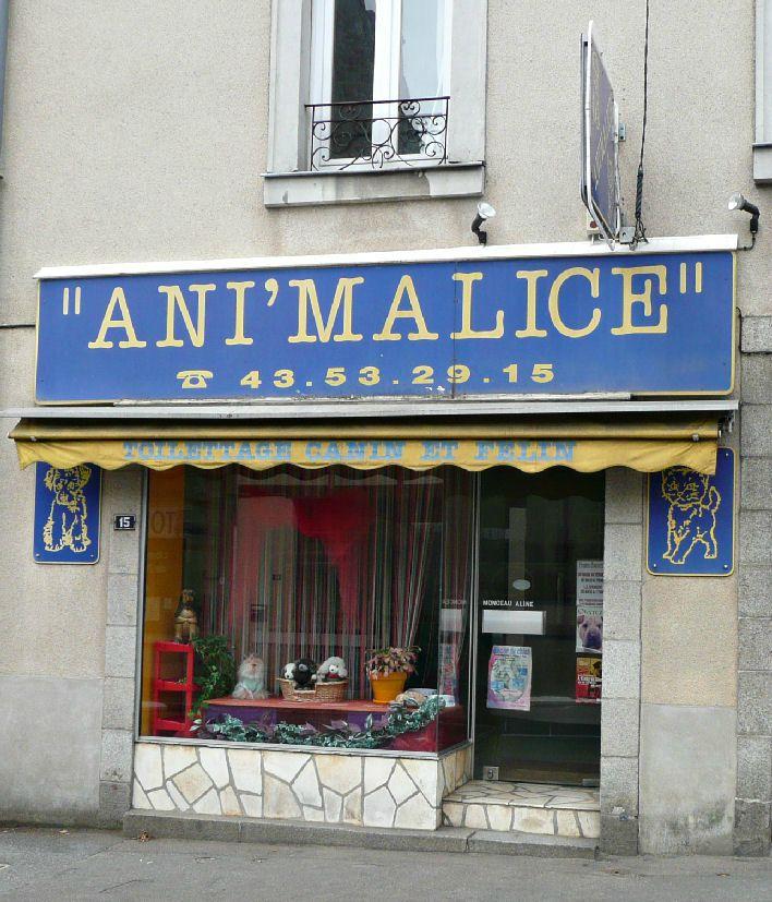 Ani 39 malice laval mayenne animalerie toilettage devanture for Salon de toilettage paris