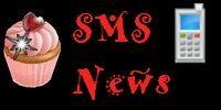 Newsletter par SMS