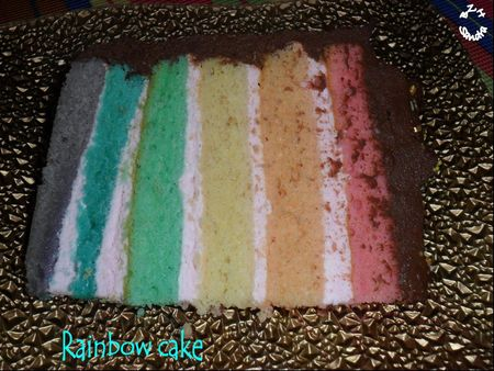 1011 Rainbow cake 9