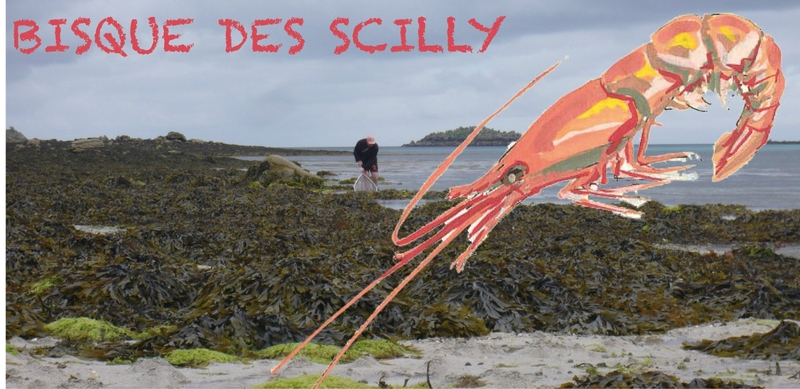 bisque scilly
