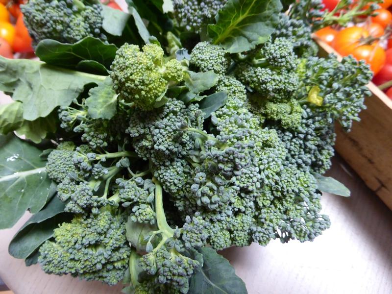6-brocolis