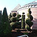Wasmes - Maison Communale arbustes sculptés 1