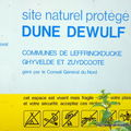 DUNE DEWULF
