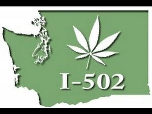 Cannabis I 502 campaign for legalisation in the state of Washington