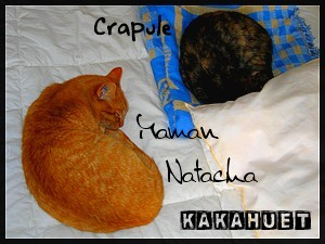 Crapule_Natou