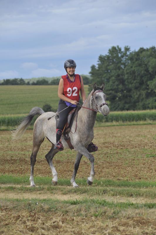 MAINZAC jeunes chevaux 2017 040