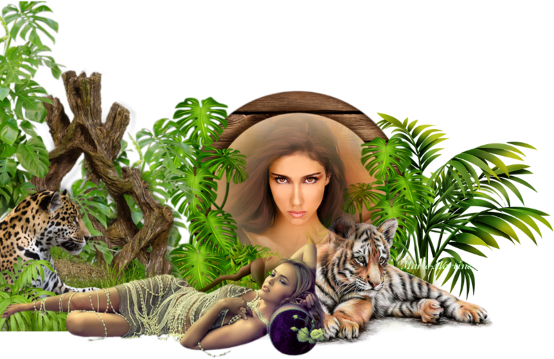 2 tigres et femme allongée