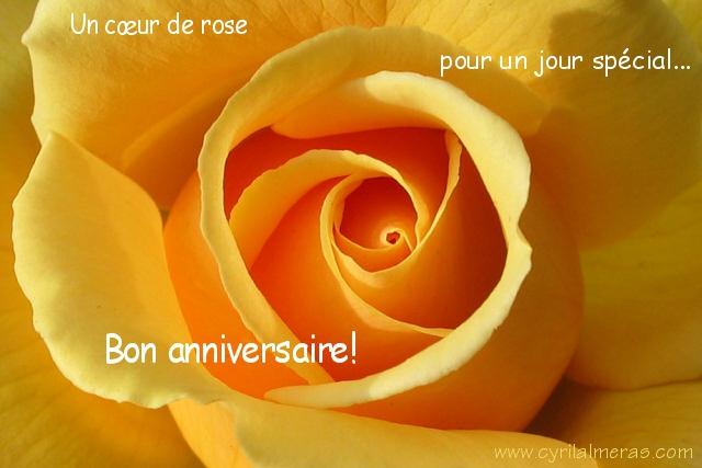 IM6CA_-2317-carte-anniversaire-coeur-de-rose