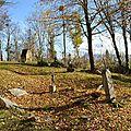 [drôme] l'église de gigors et son vieux cimetière