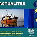 La commission européenne est accusée d'avoir négligé une étude scientifique sur la pêche électrique