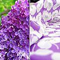 Des couleurs de printemps