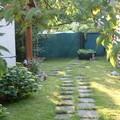 mon dimanche de jardinage