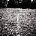 LAND ART 1967_Richard Long (Ligne faite en marchant)