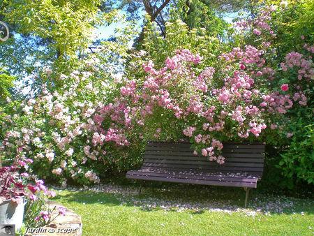 Le Jardin de Chantal et Alain Touzeau à Jouy-Le-Potier
