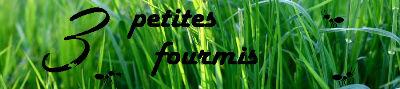 fourmis13_miniature