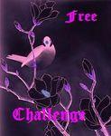 free_challenge