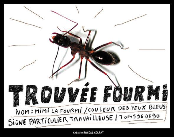 TROUV_E_FOURMI