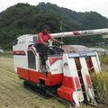 la méthode la plus rapide pour récolter le riz.
