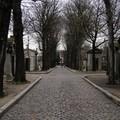 Allée ombragée du cimetière du père lachaise