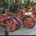Indispensables bicyclettes…