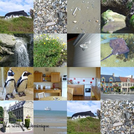 collage7_dominique_nord_pas_de_calais
