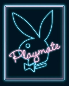 Mini-Posters-Playmate--Neon--330319
