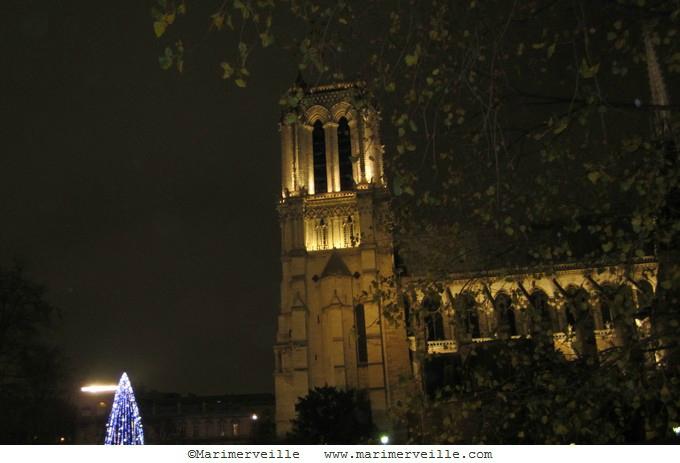Marimerveille - Notre Dame décembre 2014