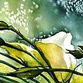 Bouquet de lysianthus