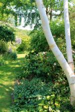 Jardin Valeriane 016