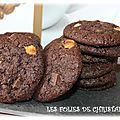 Cookies gourmands double chocolat