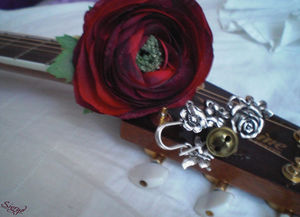 rose_grelot_guitare