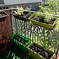 Du soleil sur le balcon!