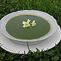 Plat : soupe au cresson