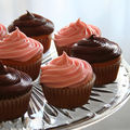 cupcakes_by_alexandra