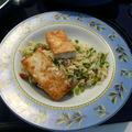 Tofu grillé avec riz et poêlée de légumes (bio) la recette du mercredi