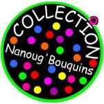 LOGO Nanoug'bouquins250