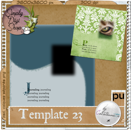 CN_Template23_Preview