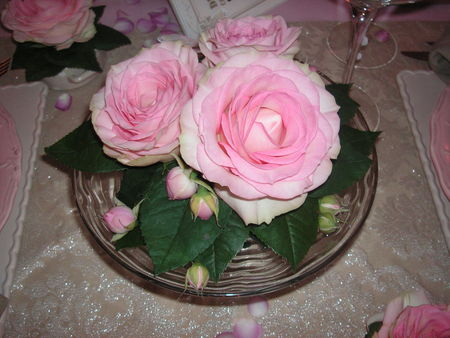 table_rose_f_te_des_m_res_039
